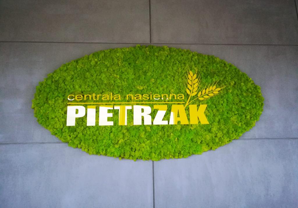 Logo z mchu reniferowego